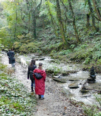 Spirit Walk in St Nectan's glen